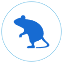 ネズミ防除業務